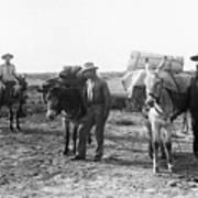 3 Desert Prospectors C. 1900 Art Print