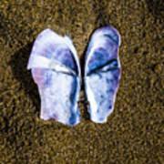 Fallen Butterfly Art Print