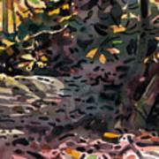 Fallen Oak Art Print
