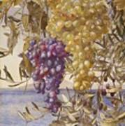 Grapes And Olives Art Print