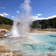 Imperial Geyser, Yellowstone Np Art Print
