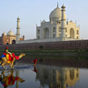 India's Taj Mahal Art Print