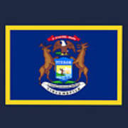 Michigan Flag Art Print