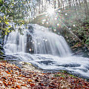 North Carolina - Dupont State Forest - Waterfall Collection Art Print