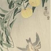 Ohara Koson Art Print