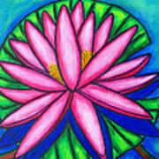 3 Pink Gems Art Print