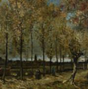 Poplars Near Nuenen Art Print
