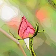 Red Garden Rose Bud Art Print