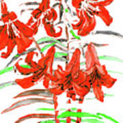Red Lilies, Hand Drawn Painting Art Print
