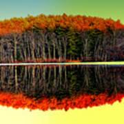 Reflections At Farrington Lake Art Print