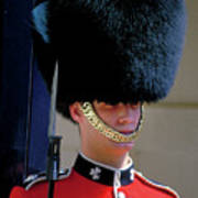 Royal Guard Art Print
