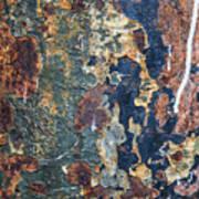 Rust Closeup  Art Print