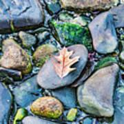 Small Rocks On The Beach Art Print