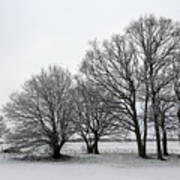 Snow On Epsom Downs Surrey Uk Art Print