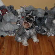Stuffed Animals Art Print