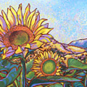 3 Sunflowers Art Print by Nadi Spencer