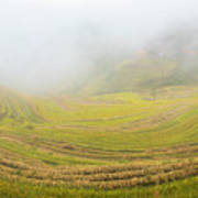 Terrace Fields Scenery In Autumn Art Print