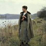 The Shepherdess Of Rolleboise Art Print