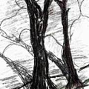 Two Tree Art Print