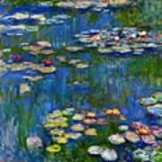 Water Lilies 1916 Art Print