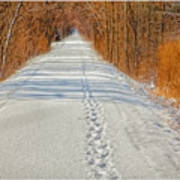 Winter On Macomb Orchard Trail Art Print by LeeAnn McLaneGoetz McLaneGoetzStudioLLCcom