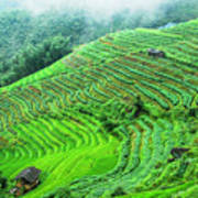 Mountain Scenery In The Mist Art Print