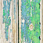 Weathered Wood Art Print