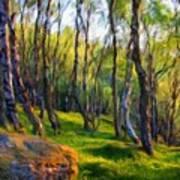Landscape Nature Art Print