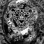 Abstract Orgone Art Print