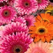 ,, Flowers ,, Art Print