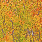 3983 Autumn Pleasure Art Print