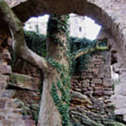 Castle Ruin Noerten-hardenberg Art Print