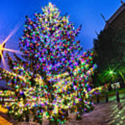 Christmas Tree Near Panther Stadium In Charlotte North Carolina Art Print