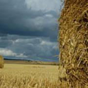 Hay Bales In Harvested Corn Field Art Print