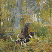 On The Trail Art Print