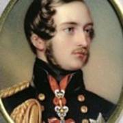 Prince Albert Henry Pierce Bone Art Print