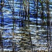 Sawgrass Revisited Art Print