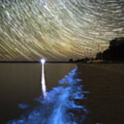 Star Trails And Bioluminescence Art Print by Philip Hart
