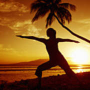 Yoga At Sunset Art Print by Ron Dahlquist - Printscapes