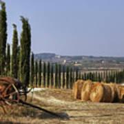 Tuscany Art Print by Joana Kruse