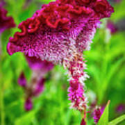 4390- Flower Art Print