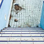 Derelict Swimming Pool Art Print