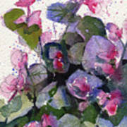 My Annual Begonias Art Print