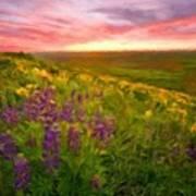 D J Landscape Art Print