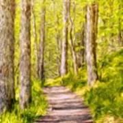 Types Of Landscape Nature Art Print