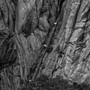 5840- Yellow Mountains Black And White Art Print