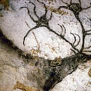 Cave Art: Lascaux Art Print