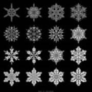 Snowflake Simulation Art Print