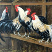 #69 - Roosters Art Print