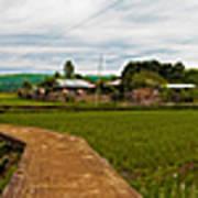 6x1 Philippines Number 123 Rice Fields Panorama Art Print